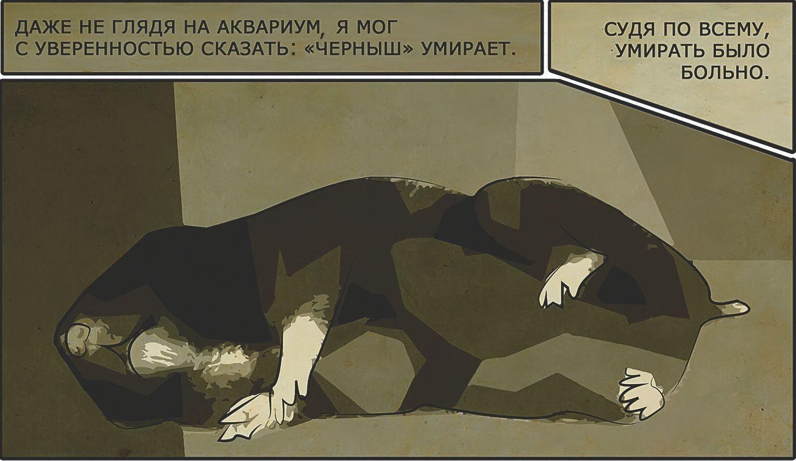 Брат и сестра на русском - смотреть порно онлайн или скачать бесплатно на сайте «V-Anal.com»
